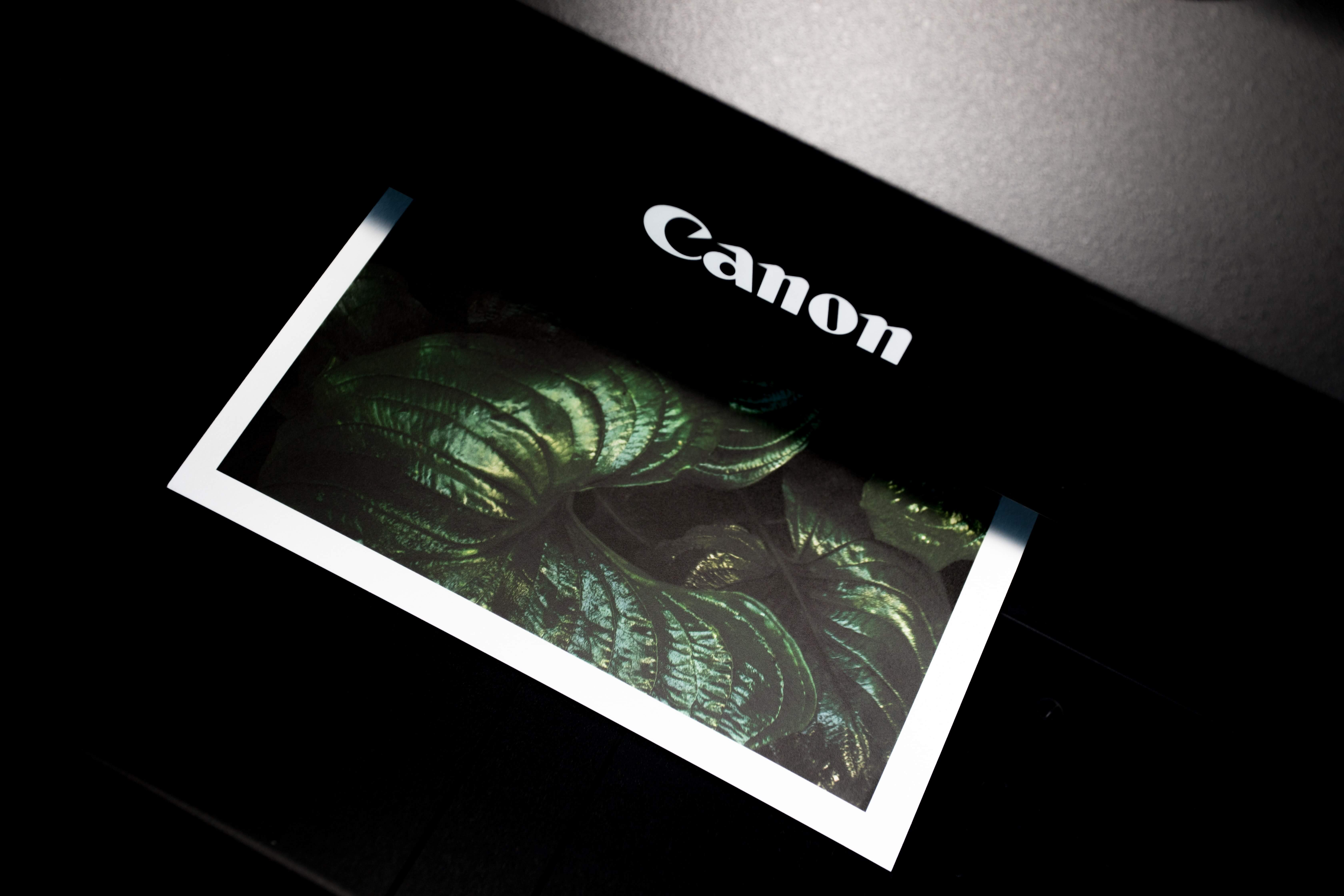 canon printeris